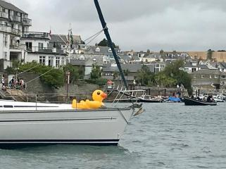 salcombe rubber duck