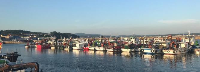 Pobra do Caraminal fishing fleet