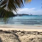 Celebrity Island Lock Down