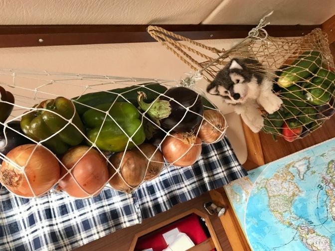 Raku in the saloon veggie net